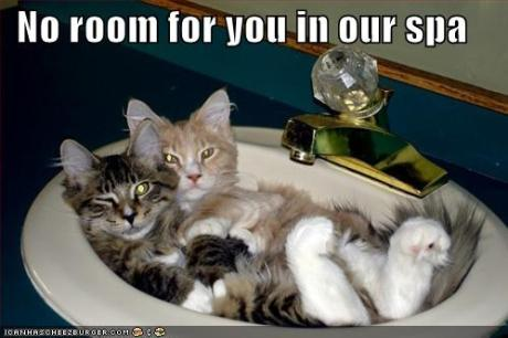 funny-pictures-there-is-no-room-for-you-in-the-spa