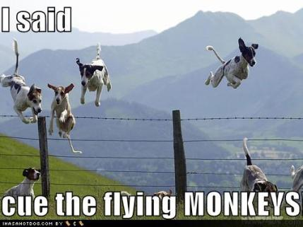funny-dog-pictures-i-said-cue-the-flying-monkeys