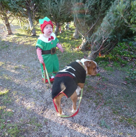 Henry elf 2