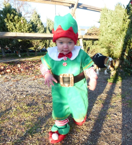 Henry elf 3