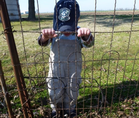 henry fence