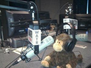 Wiserbud WATR radio monkey