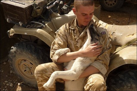 soldier and dog7
