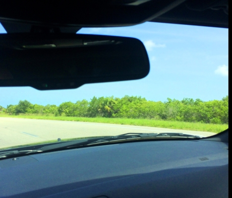 Can you say blind spot?