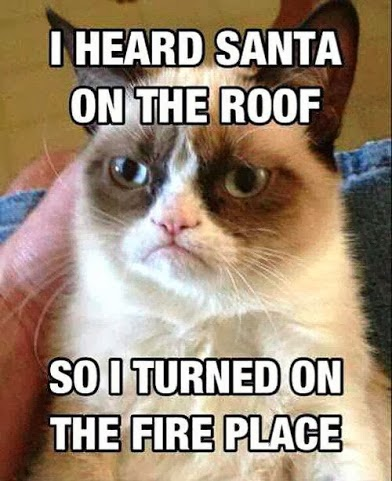 Grumpy-Cat-Santa-roof