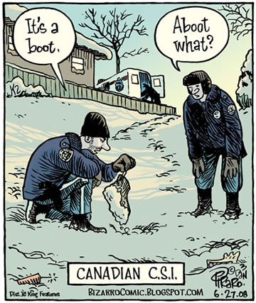 canadian-csi