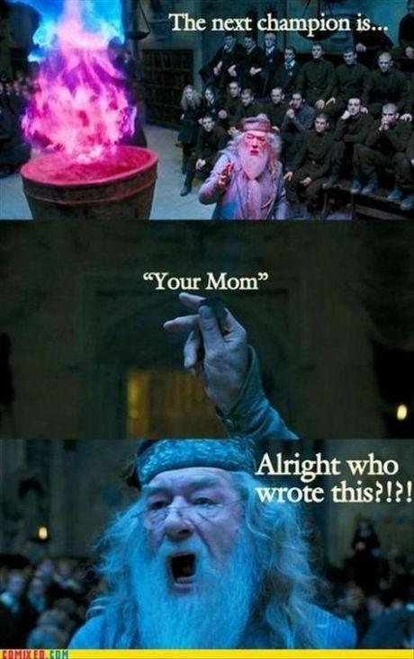 your-mom-champion
