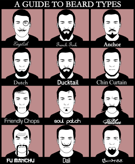 a_guide_to_beard_types_by_magnaen-d5ehy2m