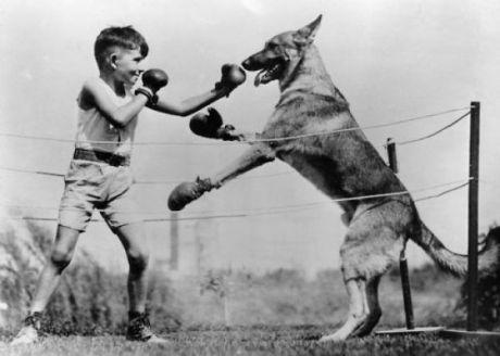 funny_and_wtf_vintage_animal_pics_640_04