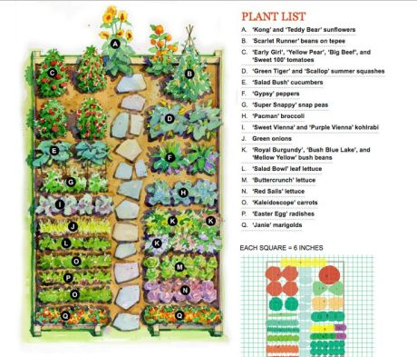 spectacular-vegetable-garden-layout-14-about-remodel-brilliant-home-design-your-own-with-vegetable-garden-layout