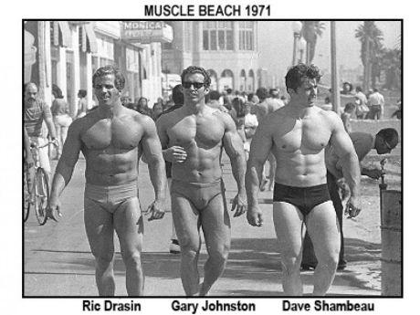 musclebeach71