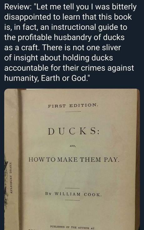 DucksHowToMakeThemPay