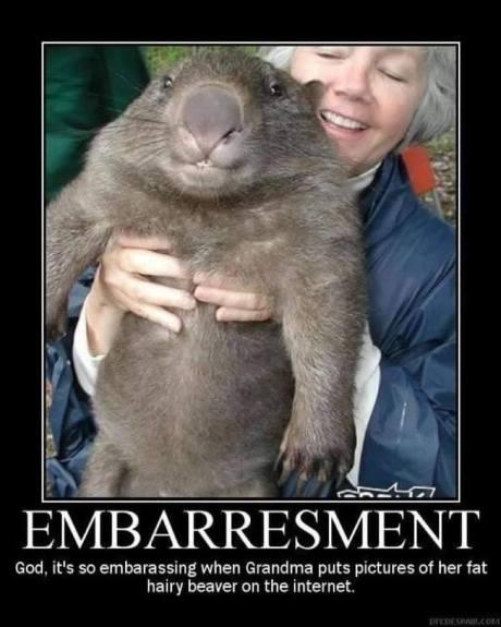 Emberresment