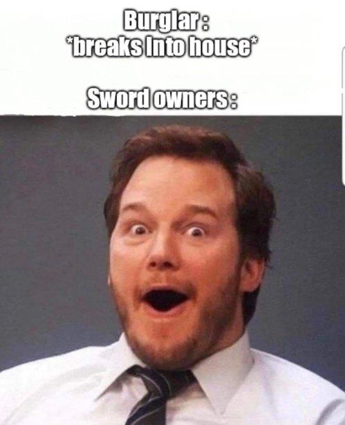 BurglarBreaksIntoHouse