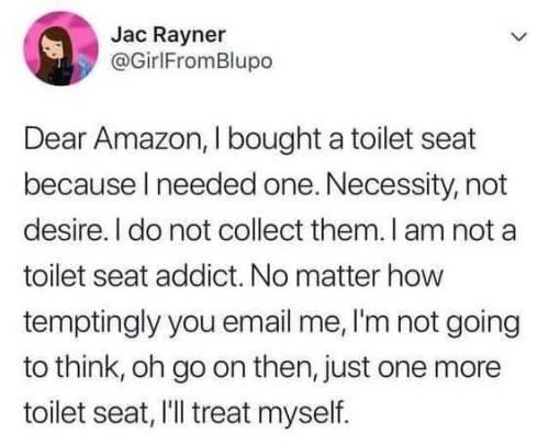 DearAmazonIBoughtAToiletSeat
