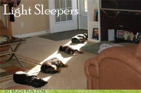 LightSleepers