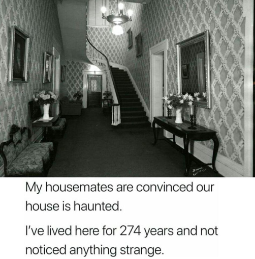 MyHousematesAreConvinced