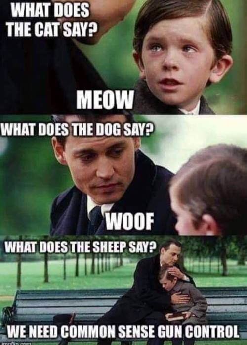 WhatDoesTheCatSay