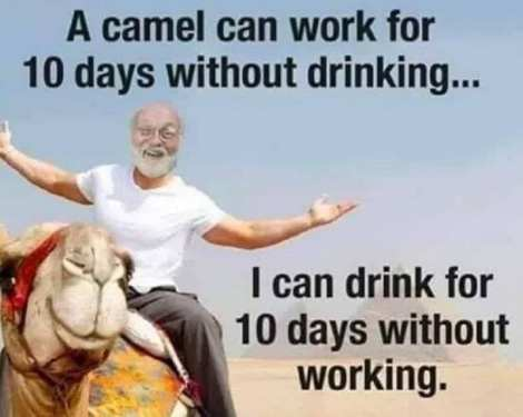 ACamelCanWorkFor10Days