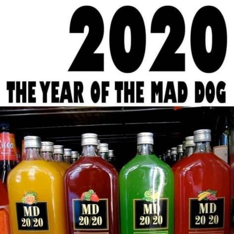 2020YearOfTheMadeDog